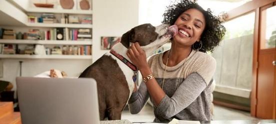 Thuiswerken vrouw samen met hond